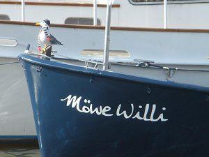 moewe-willi